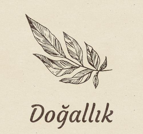 Sütçüoğlu